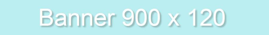 banner 900 x 120